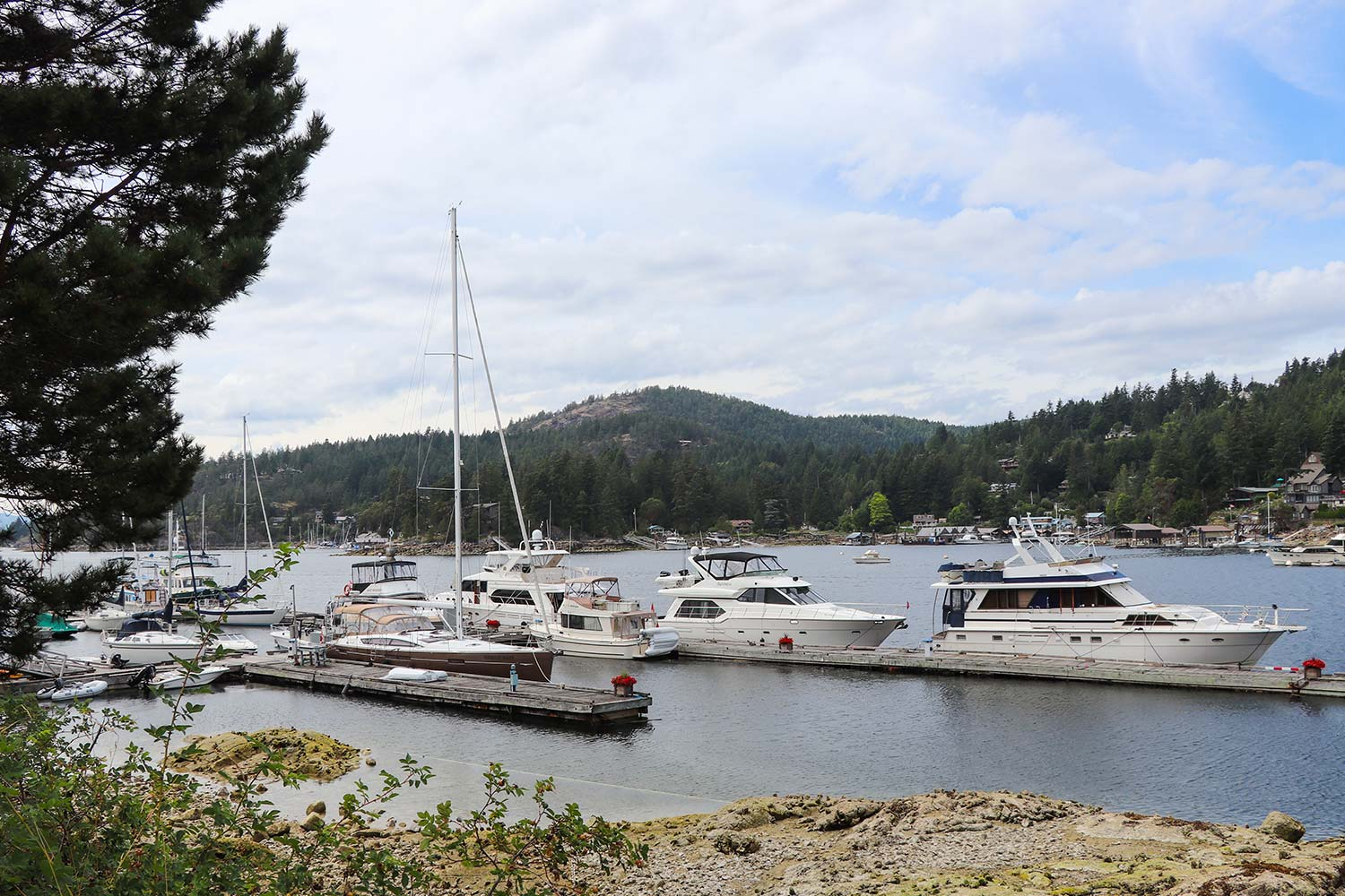 A view from the shoreline - boats moored at John Henry's marine fuel dock and yacht moorage.