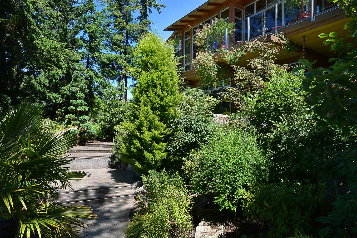 Stairs wind up through the lush, green garden of this luxury home, for rent by a private owner.