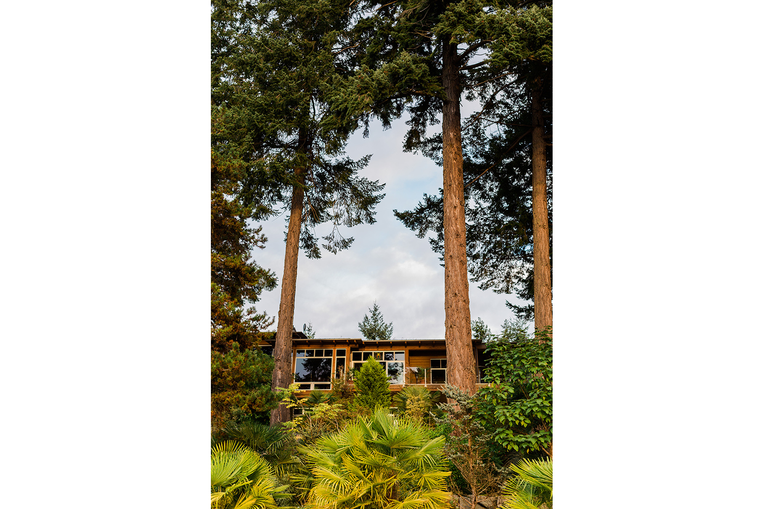 Tall pine trees stand on either side of this magnificent 4 bedroom home for rent at John Henry's Marina and Resort.